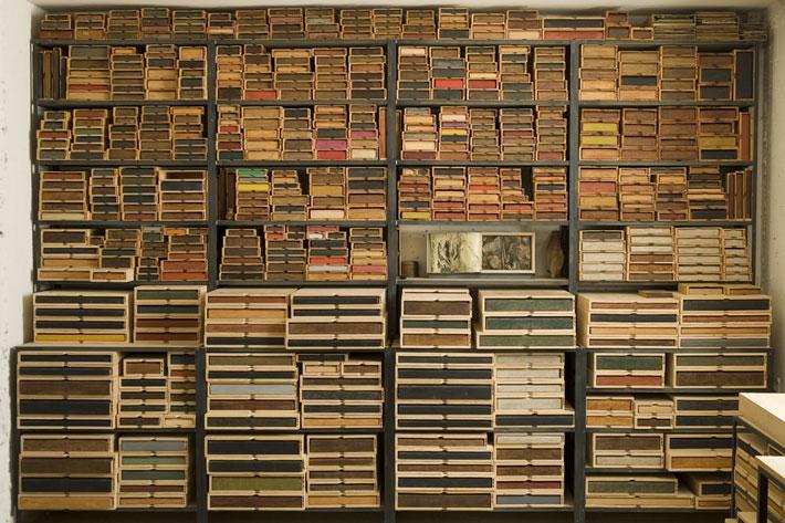 Biblioteca del Bosque