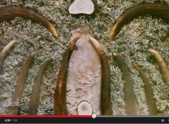 Video El aura de los ciervos