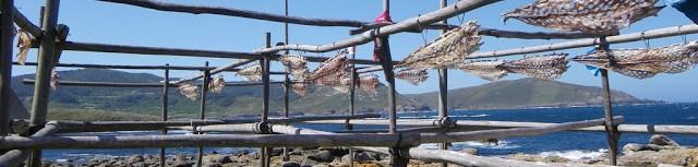 Costa da Morte. Viento, plumas y escamas